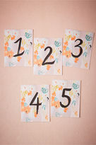 BHLDN Brushed Blooms Table Numbers (5)