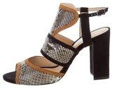 Alexandre Birman Snakeskin Cutout Sandals