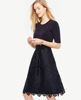Ann Taylor Lace Skirt Dress