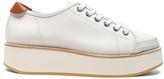 Flamingos Leather Tatum Sneakers