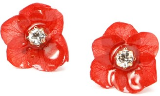 I'mmany London Real Flower Mariesii Red Hydrangea Stud Earrings