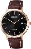 Citizen AU1083-13H Eco-Drive Watch
