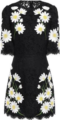 Dolce & Gabbana Embroidered Scalloped Corded Lace Mini Dress