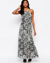 Goldie Elegance Maxi Dress With Low Back In Leopard Print