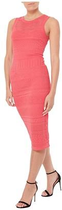 Milly Column Tech Pointelle Dress (Fuchsia) Women's Clothing