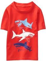 Crazy 8 Shark Rash Guard