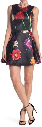 Alice + Olivia Stasia Floral Skater Party Dress
