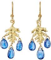 Cathy Waterman Women's Leaf Drop Earrings