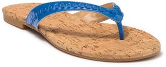 Jack Rogers Collins Flip Flop Sandal