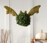 Pottery Barn Live Bat Topiary