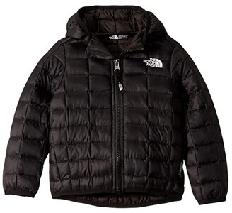 The North Face Kids ThermoBalltm Eco Hoodie (Toddler) (Meld Grey) Kid's Coat