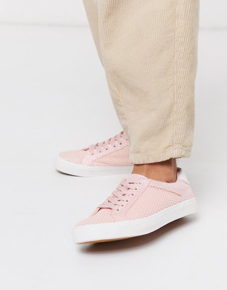 Xti lace up sneakers