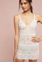 Samantha Chang Honeymoon Lace Slip