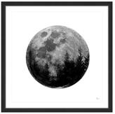 Globe Forest (Framed Giclee)