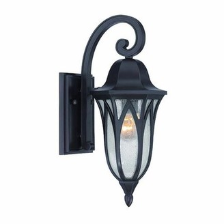 Fleur De Lis Living Besaw 1-Light Outdoor Wall Lantern Color: Architectural Bronze