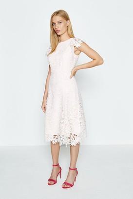 Coast Lace Angel Sleeve Dress