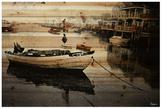 Parvez Taj Still Dock (Wood)