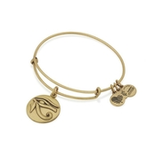 Alex and Ani Eye Of Horus Bracelet