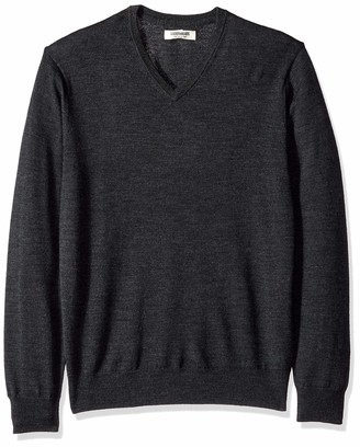 Goodthreads Amazon Brand Men's Lightweight Merino Wool V-Neck Sweater