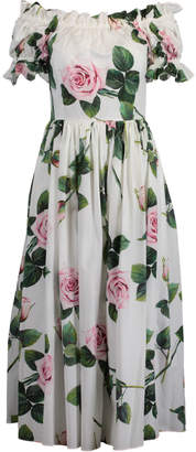 Dolce & Gabbana Tropical Rose Print Poplin Dress