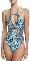 Splendid Tropic Spots One-Piece Halter-Neck Swimsuit, Blue Pattern