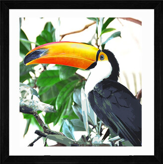 Cooper Black Toucan Paradise Print With Frame