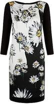 Damsel in a Dress Daisy Floris Dress, Multi