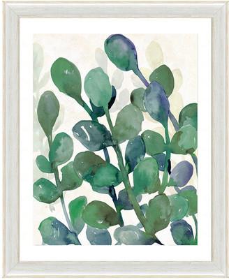Vintage Print Gallery Luscious Watercolor Greenery Ii Framed Graphic Art