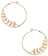 Tai CZ Olive Branch Hoop Earrings