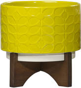 Orla Kiely Ceramic Planter with Wooden Base