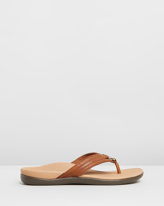 Vionic Women's Brown All thongs - Tide Aloe Toe Post Sandals - Size One Size, 6 at The Iconic