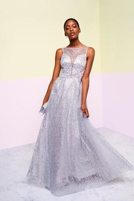 Coast Embellished Tulle Skirt Maxi Dress