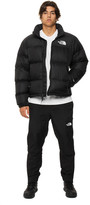 The North Face Windwall Pants