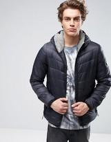 Globe Padded Jacket with Hood