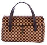 Louis Vuitton Damier Sauvage Lionne Bag
