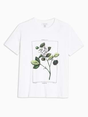 Topshop Violette Floral T-Shirt - White