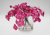 Ethan Allen Fuchsia Orchids in Glass Cylinder