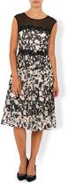 Monsoon Victoria Print Dress
