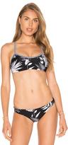Seafolly Tropic Coast Sport Bikini Top