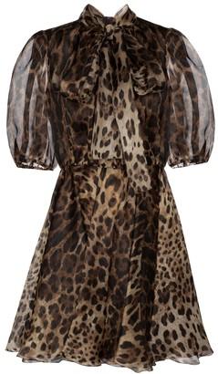 Dolce & Gabbana Leopard-print silk organza minidress