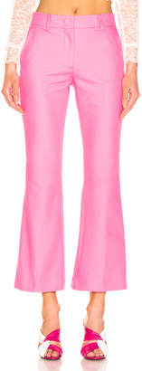 MSGM Tailored Crop Pant in Pink | FWRD