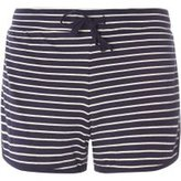 Dorothy Perkins Womens Navy Stripe Jersey Shorts- Blue