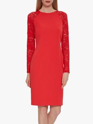 Gina Bacconi Tristine Lace Sleeve Dress