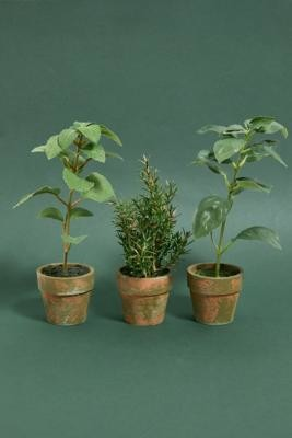 Urban Outfitters Faux Potted Herb Plant Assorted - Assorted ALL at