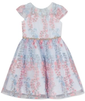 Rare Editions Little Girls Embroidered Mesh Dress