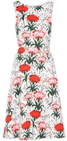 Erdem Maia printed cotton dress