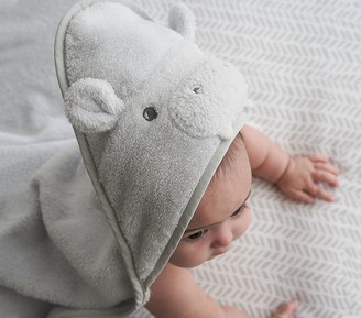 Pottery Barn Kids Super Soft Animal Baby Hooded Towel & Washcloth Set