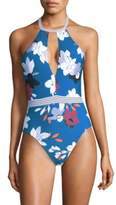 Red Carter Halter Plunge One-Piece Swimsuit
