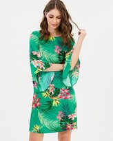 Dorothy Perkins Tropical Shift Summer Dress