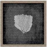 PTM Images Sea Fan II Wall Art